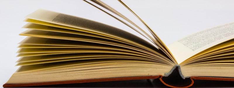 Schrikkeldag en boeken
